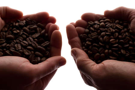 Two man's hand a handful of coffee beans - silhouette, isolate