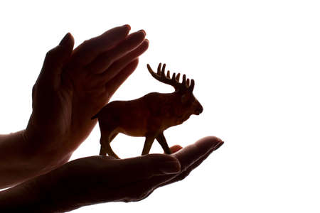 Woman's hands with a rare endangered animal figure - dark isolated silhouette, concept of protecting animals from extinction