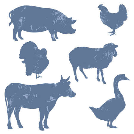 Farm animals, silhouettes, grunge style Vector