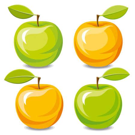 orange blossom: Set of vector apples