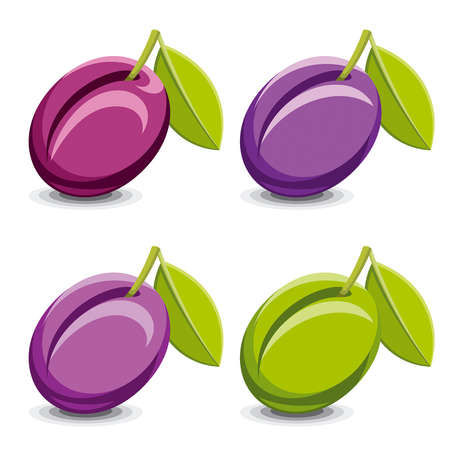 plum flower: Set of vector plums