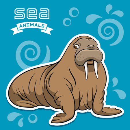 sea cow: Vector illustration of a walrus