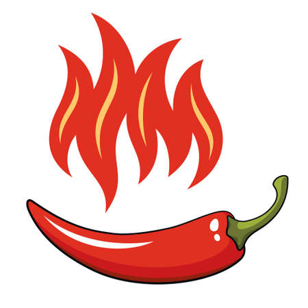 chilly: Hot pepper, vector illustration Illustration