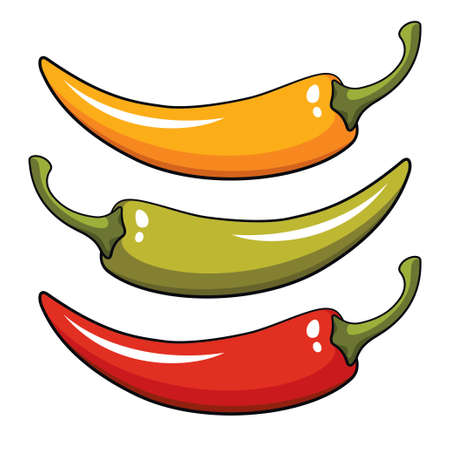 cayenne pepper: Pepper, vector illustration