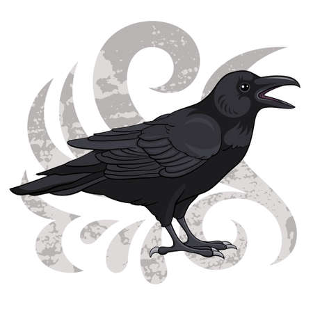 Raven, vector illustration Vector