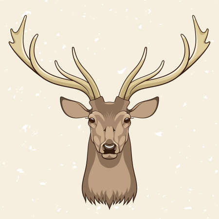 deer hunting: Deer head, vector illustration