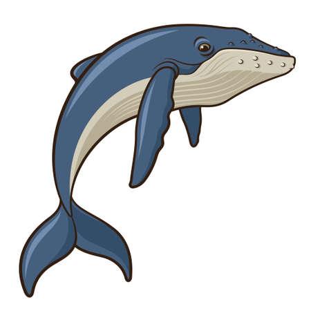 Illustratie van een walvis die op een witte