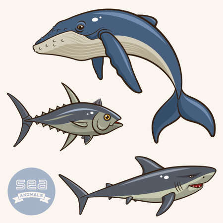 Vector collection of sea animals isolated on a light background. Whale, shark and tuna