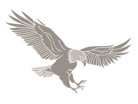 aguila volando: Ilustraci�n vectorial de una silueta del �guila calva Vectores
