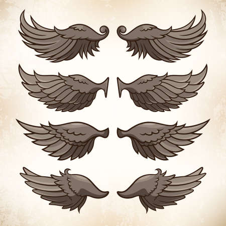 illustration of wings, decorative element for your design Vector