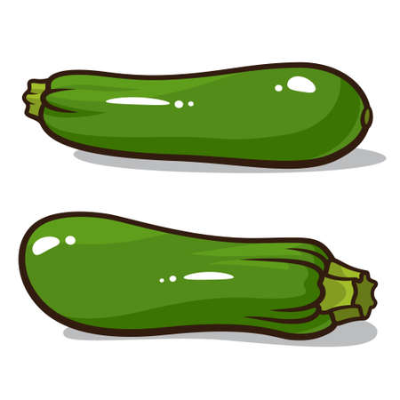 Vector illustration of zucchinis isolated on a white background