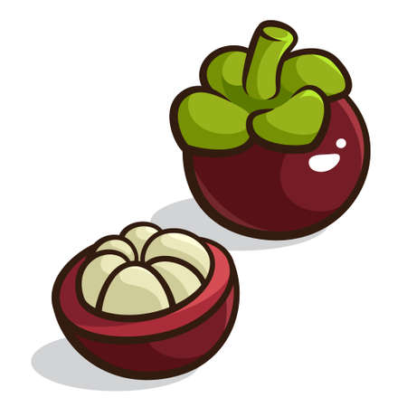 illustration of a Purple Mangosteen isolated on a white background