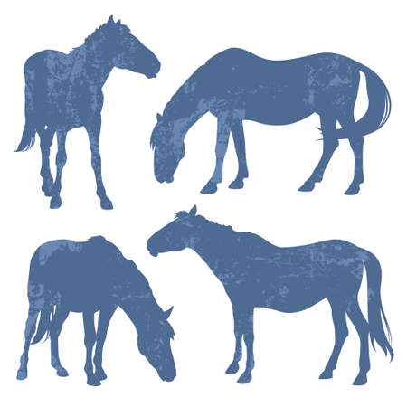 Silhouettes of horses with grunge effect isolated on a white background Illustration