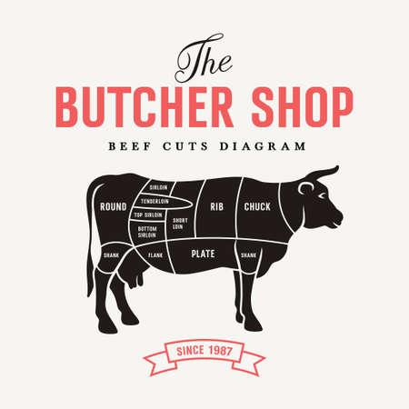 Carnicería: Beef corta diagrama, ilustración vectorial para su diseño