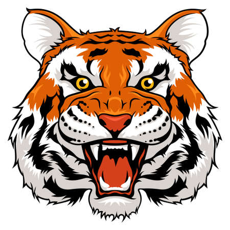 Vector illustration of angry tiger isolated on white 向量圖像