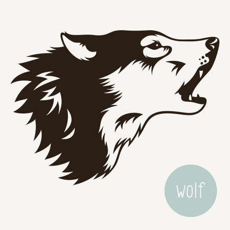 wolf face: Vector illustration of wolf isolated on white Illustration