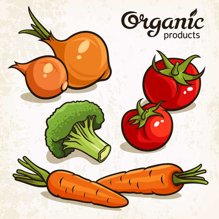 tomatoes: illustration of vegetables: carrot, onion, tomatoes, broccoli Illustration