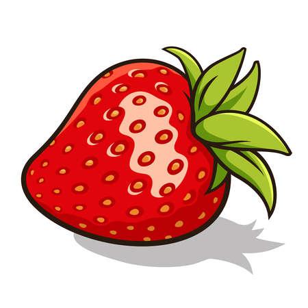 신선한, 잘 익은 딸기의 그림 흰색에 고립 일러스트