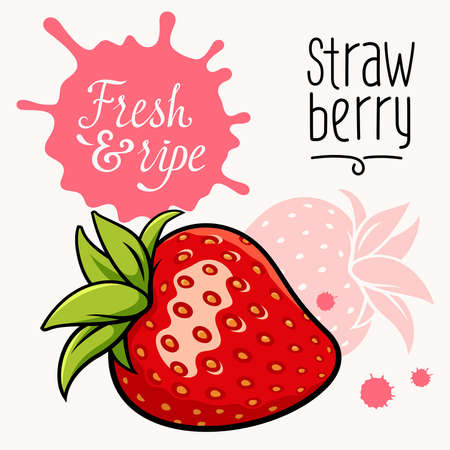 illustration of ripe juicy strawberry. Concept for a Farmers Market. Idea for the label design. Organic, local grown products Illustration