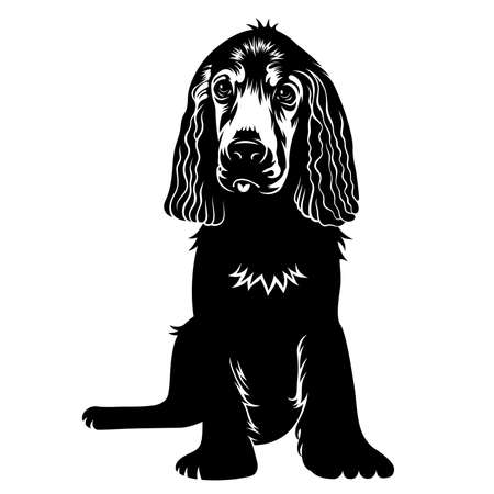 spaniel: Vector hand drawn silhouette of a cute puppy dog. T-shirt print graphics