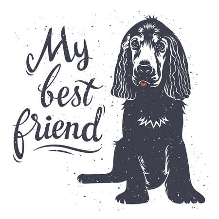 spaniel: Vector hand drawn typography poster with a cute puppy dog. My best friend. Inspirational and motivational illustration. T-shirt print graphics