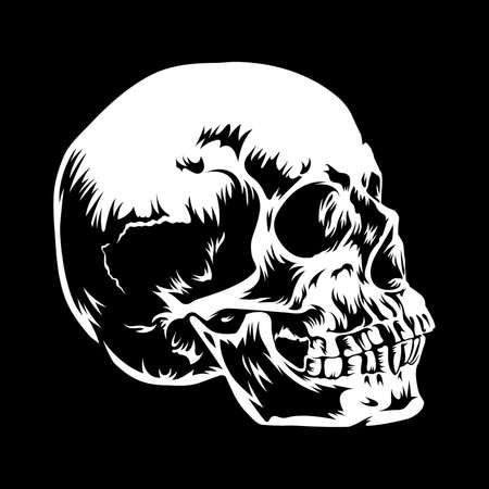 Hand drawn vector illustration of a Human Skull in black and white colors