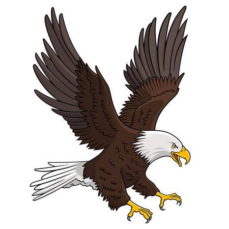 Aquila calva isolata su bianco. Questa illustrazione può essere utilizzata come una stampa su magliette, elementi per tatuaggi o altri usi