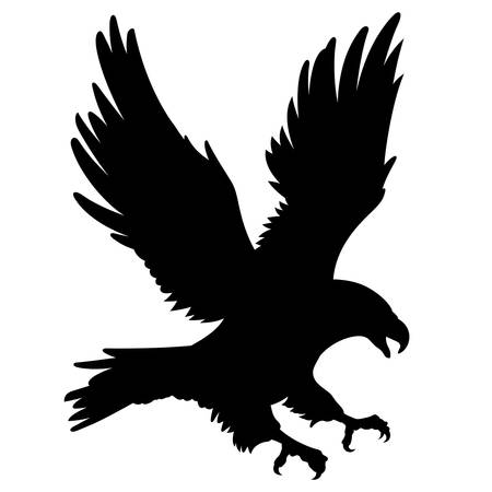 Black Eagle silhouette isolated on white