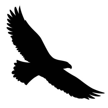 Siluetta dell'aquila calva isolata su bianco. Questa illustrazione vettoriale può essere utilizzata come stampa su t-shirt, elementi del tatuaggio o altri usi Vettoriali