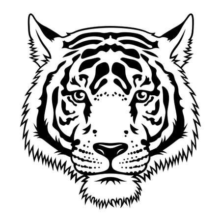 Tiger black white sketch. Vector. T-shirt print design. Tee graphics Vektorové ilustrace