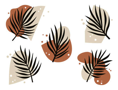 Abstract Art Design. Set of abstract shapes and plant elements. Minimal trendy contemporary collage. Vector illustration