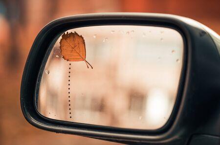 rear view mirror: leaf on rear view mirror