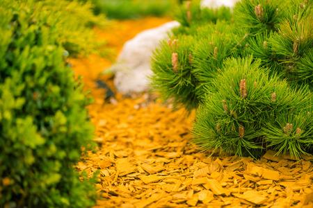 colorful garden ground decoration