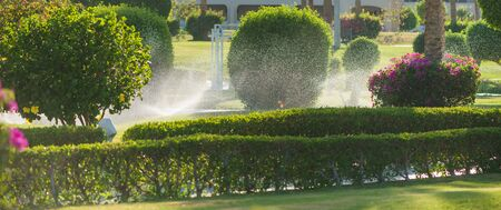 irrigation system in tropical park