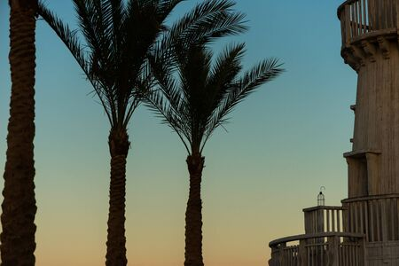 palm trees and vintage wooden lighthouse Standard-Bild