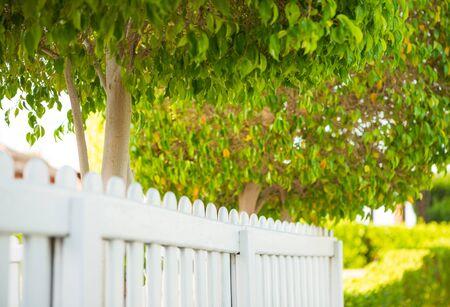 view along summer park white wooden fence Standard-Bild
