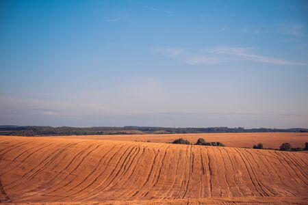 harvested farm field landscape at summer sunset