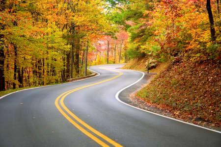 Winding road Stock Photo - 3446835