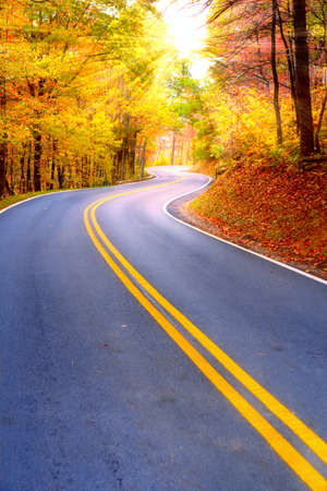 Kronkelende weg