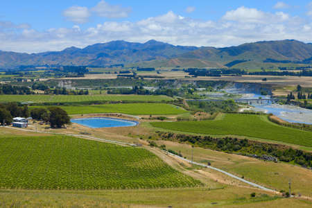Marlborough wine region in the South Island of New Zealand  photo