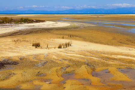 Tasman Bay in New Zealand during low tide  photo