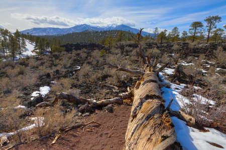 scoria: Arizona high desert in winter Stock Photo