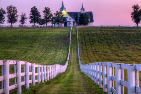kentucky: Horse Farm