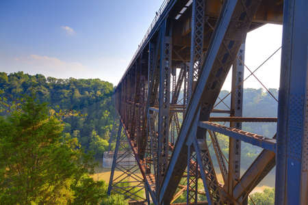 forest railroad: Railroad Bridge Stock Photo
