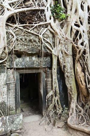 Temple de Ta Prohm Banque d'images - 15303676