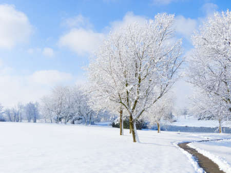 Fresh snow in a park Stock Photo