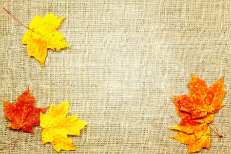 Fall-themed background of burlap and colorful leaves