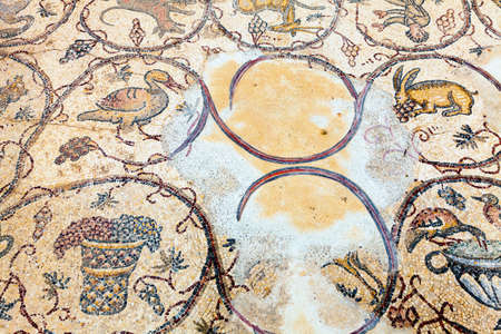 mosaic floor: Elements of floor mosaic at Caesarea in Israel Stock Photo