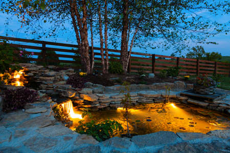 Koi pond in a garden at night