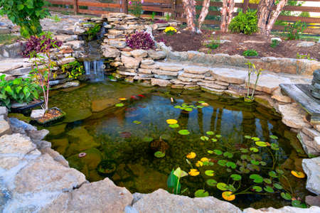 backyards: Decorative koi pond Stock Photo